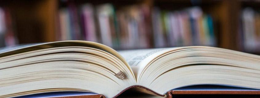 Publikationen zu betriebswirtschaftlichen Sachverhalten wie Unternehmensbewertung, Insolvenzanalyse und Überschuldung.